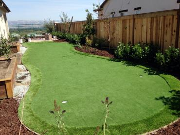 Artificial Grass Photos: Lawn Services Campo, California Artificial Putting Greens, Backyard Designs