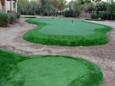 Artificial Grass Photos: Lawn Services Encinitas, California Putting Green Flags, Backyard Designs