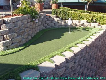 Lawn Services Holtville, California Indoor Putting Greens, Backyards artificial grass