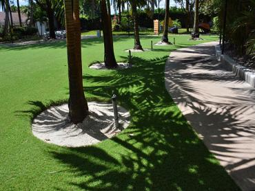 Artificial Grass Photos: Lawn Services Jamul, California Artificial Grass For Dogs, Commercial Landscape