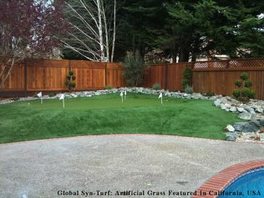 Lawn Services San Diego, California Lawns, Backyard Makeover artificial grass