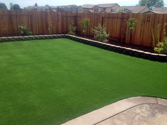 Artificial Grass Photos: Lawn Services Vista, California City Landscape, Backyards