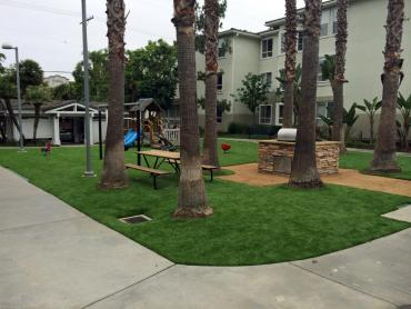 Artificial Grass Photos: Outdoor Carpet Fairbanks Ranch, California Lawn And Garden, Commercial Landscape