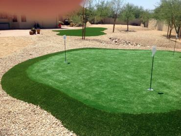 Artificial Grass Photos: Outdoor Carpet San Diego, California Backyard Putting Green, Backyard Designs