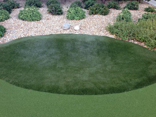 Artificial Grass Photos: Plastic Grass Borrego Springs, California Landscape Ideas