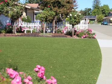 Artificial Grass Photos: Plastic Grass Chula Vista, California Landscape Design, Landscaping Ideas For Front Yard