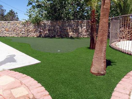 Artificial Grass Photos: Plastic Grass San Diego, California Artificial Putting Greens, Beautiful Backyards