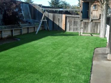 Artificial Grass Photos: Plastic Grass Winter Gardens, California Lawn And Landscape, Backyard Designs