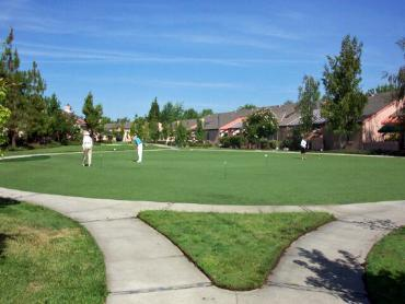 Artificial Grass Photos: Synthetic Grass Cost Camp Pendleton South, California Backyard Putting Green, Commercial Landscape