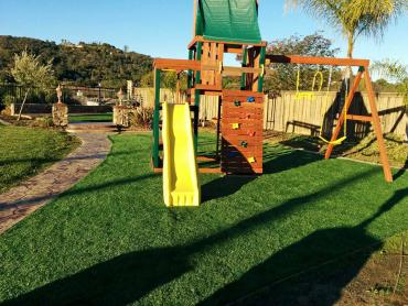 Artificial Grass Photos: Synthetic Grass Cost Solana Beach, California Lawn And Garden, Backyard Landscaping