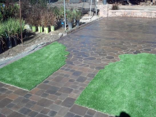 Artificial Grass Photos: Synthetic Grass Holtville, California Landscaping Business, Backyard Garden Ideas