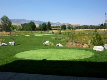 Artificial Grass Photos: Synthetic Grass Julian, California Putting Green Flags, Backyard Ideas