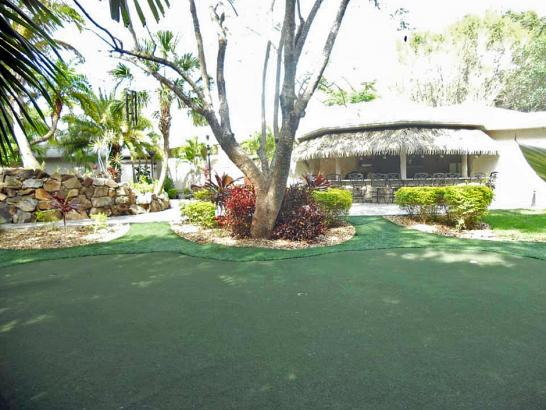 Artificial Grass Photos: Synthetic Grass La Presa, California Backyard Playground, Commercial Landscape