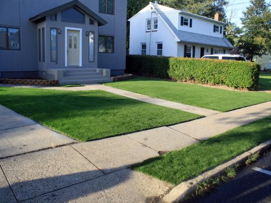 Artificial Grass Photos: Synthetic Grass Oceanside, California Landscape Photos, Front Yard Landscape Ideas