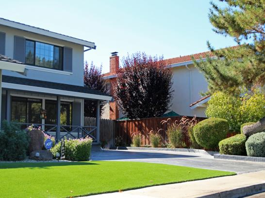 Artificial Grass Photos: Synthetic Grass Pine Valley, California Landscaping Business, Front Yard Landscaping