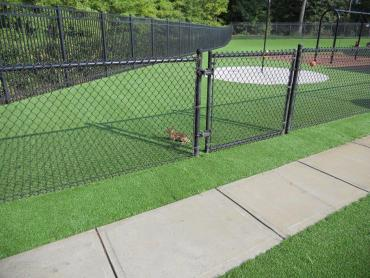 Artificial Grass Photos: Synthetic Grass Rancho San Diego, California City Landscape, Parks