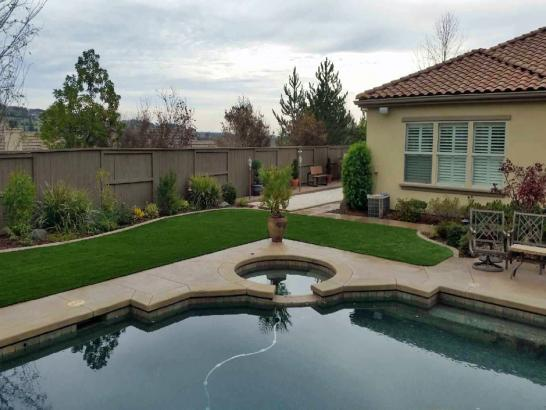 Artificial Grass Photos: Synthetic Grass Spring Valley, California Backyard Deck Ideas, Backyard Design
