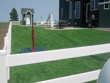 Artificial Grass Photos: Synthetic Grass Vista, California Home And Garden, Front Yard Landscaping