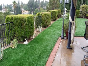 Artificial Grass Photos: Synthetic Lawn Lakeside, California Landscape Photos, Backyard Landscape Ideas