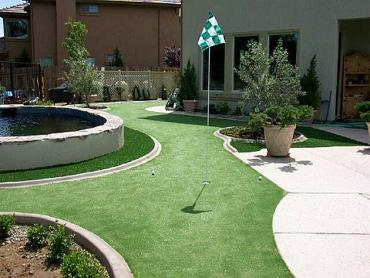 Artificial Grass Photos: Synthetic Turf Borrego Springs, California Golf Green, Backyard Landscape Ideas