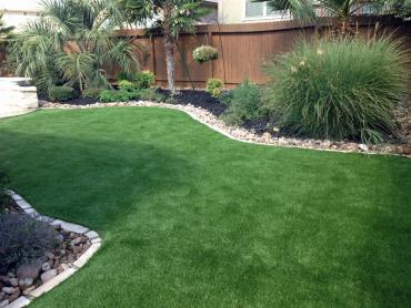 Artificial Grass Photos: Synthetic Turf Chula Vista, California Landscape Design, Backyard Design