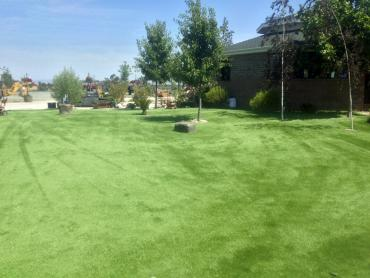 Artificial Grass Photos: Synthetic Turf Lemon Grove, California Design Ideas, Recreational Areas