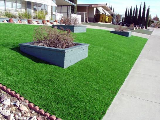 Artificial Grass Photos: Synthetic Turf Supplier Fairbanks Ranch, California Lawns, Front Yard Landscaping