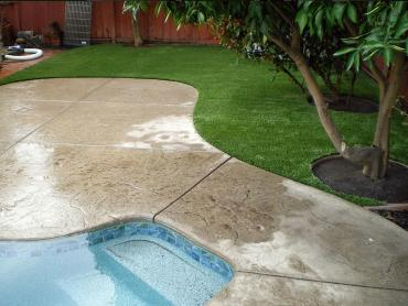 Artificial Grass Photos: Synthetic Turf Supplier Julian, California Landscape Photos, Swimming Pool Designs