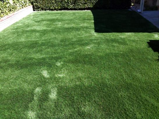 Artificial Grass Photos: Synthetic Turf Supplier Lemon Grove, California Backyard Deck Ideas, Backyard Landscaping Ideas