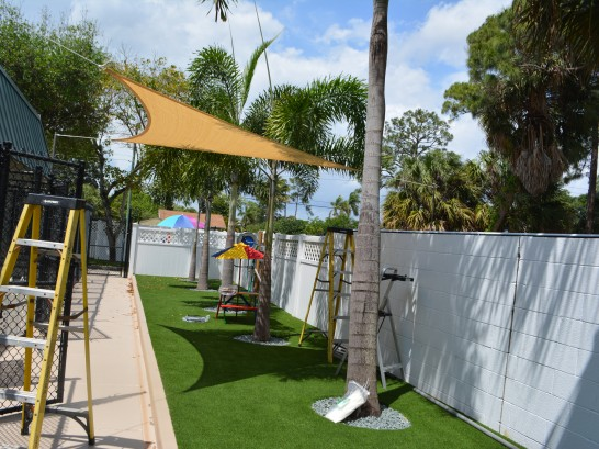 Artificial Grass Photos: Synthetic Turf Supplier Seeley, California Cat Grass, Commercial Landscape