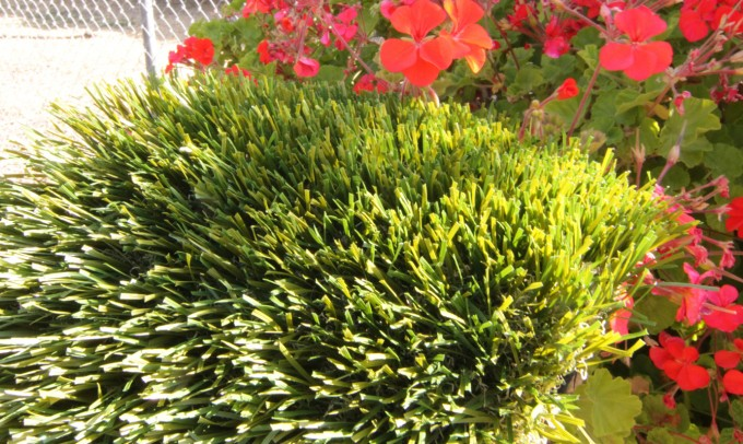 Double S-72 syntheticgrass Artificial Grass San Diego California