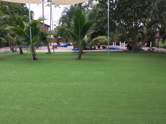 Artificial Grass Photos: Turf Grass Desert Shores, California Gardeners, Commercial Landscape