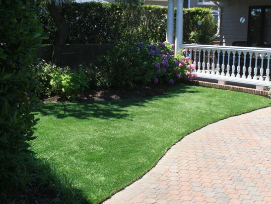 Artificial Grass Photos: Turf Grass Fallbrook, California Gardeners, Front Yard Landscape Ideas