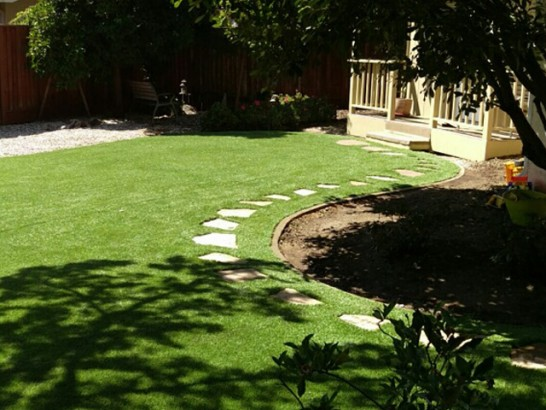 Artificial Grass Photos: Turf Grass Poway, California Design Ideas, Small Backyard Ideas