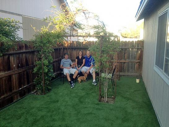 Artificial Grass Photos: Turf Grass Seeley, California Hotel For Dogs, Backyard Landscape Ideas