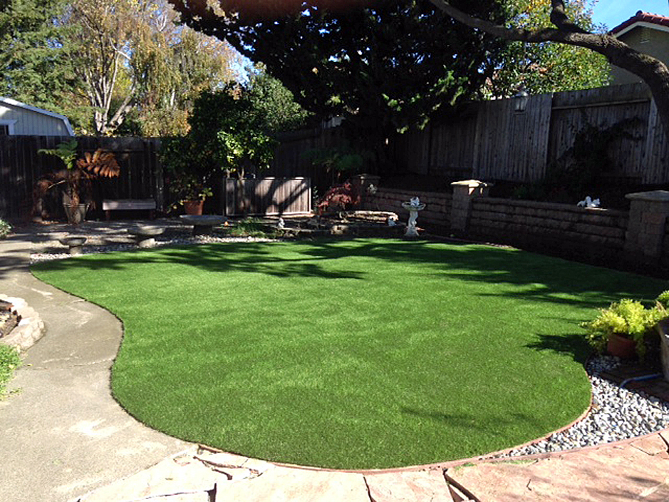 Grass Turf Heber, California Paver Patio, Backyard ... on Artificial Turf Backyard Ideas id=75663